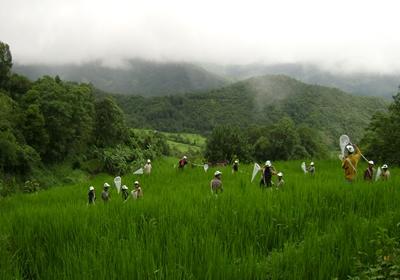 IPM 2008 Kohima (41)